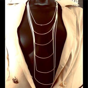 Natasha layered necklace nwt